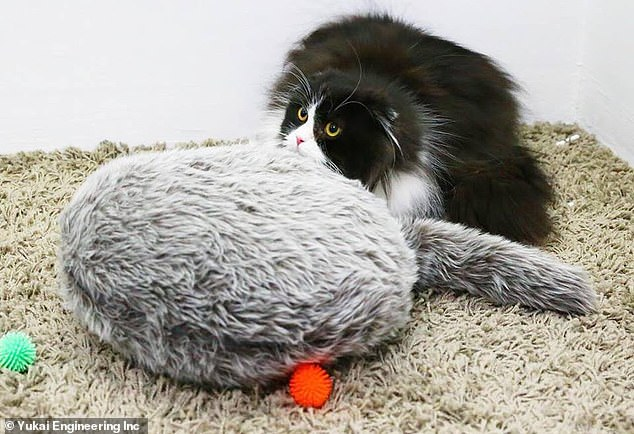 The purpose of this robotic creature is to soothe owners, as it has been confirmed in three psychological evaluations to ease anxiety, depression and feelings of fatigue