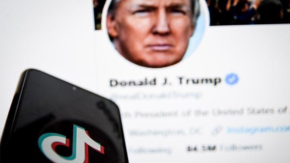 Trump/TikTok graphic