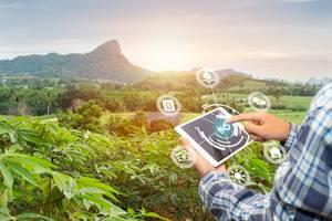 GettyImages-gan chaonan - farmer mobile tech traceability