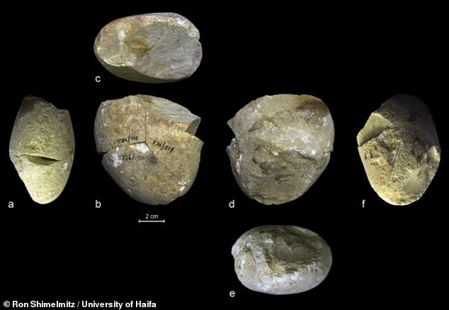 The dolemite cobble, seen here from different angles, bears markings similar to those found on later grinding tools. Grinding and scrapingrequire a horizontal motion and allows for more delicate work