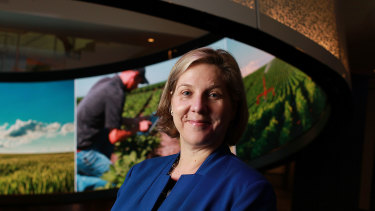 Australian-born Robyn Denholm resigned as Telstra's chief financial officer to take up the chair at Tesla.