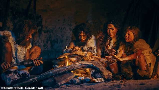 Evidence from human biology was supplemented by archaeological evidence, allowing the Israeli team to pain a broader picture of stone age diets. Stock image