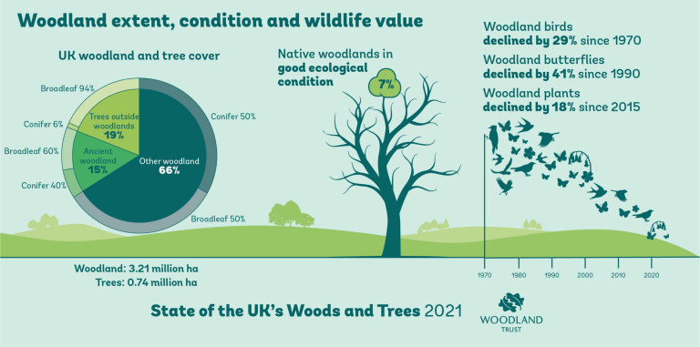An infographic from the report from the Woodland Trust (Credits: PA)