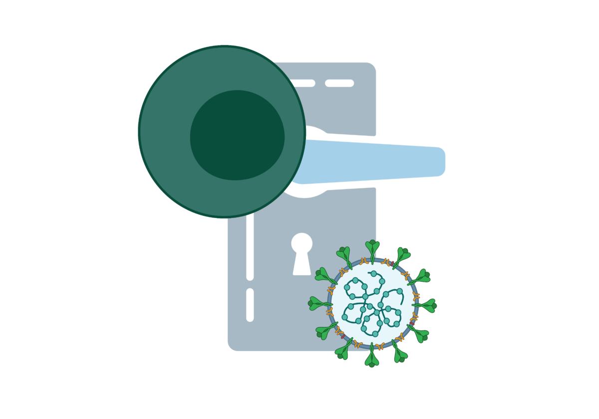 Piirroskuva jossa on ovi ja sen edessä koronavirus ja immuunisolu