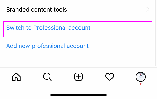 switch to professional account highlighted