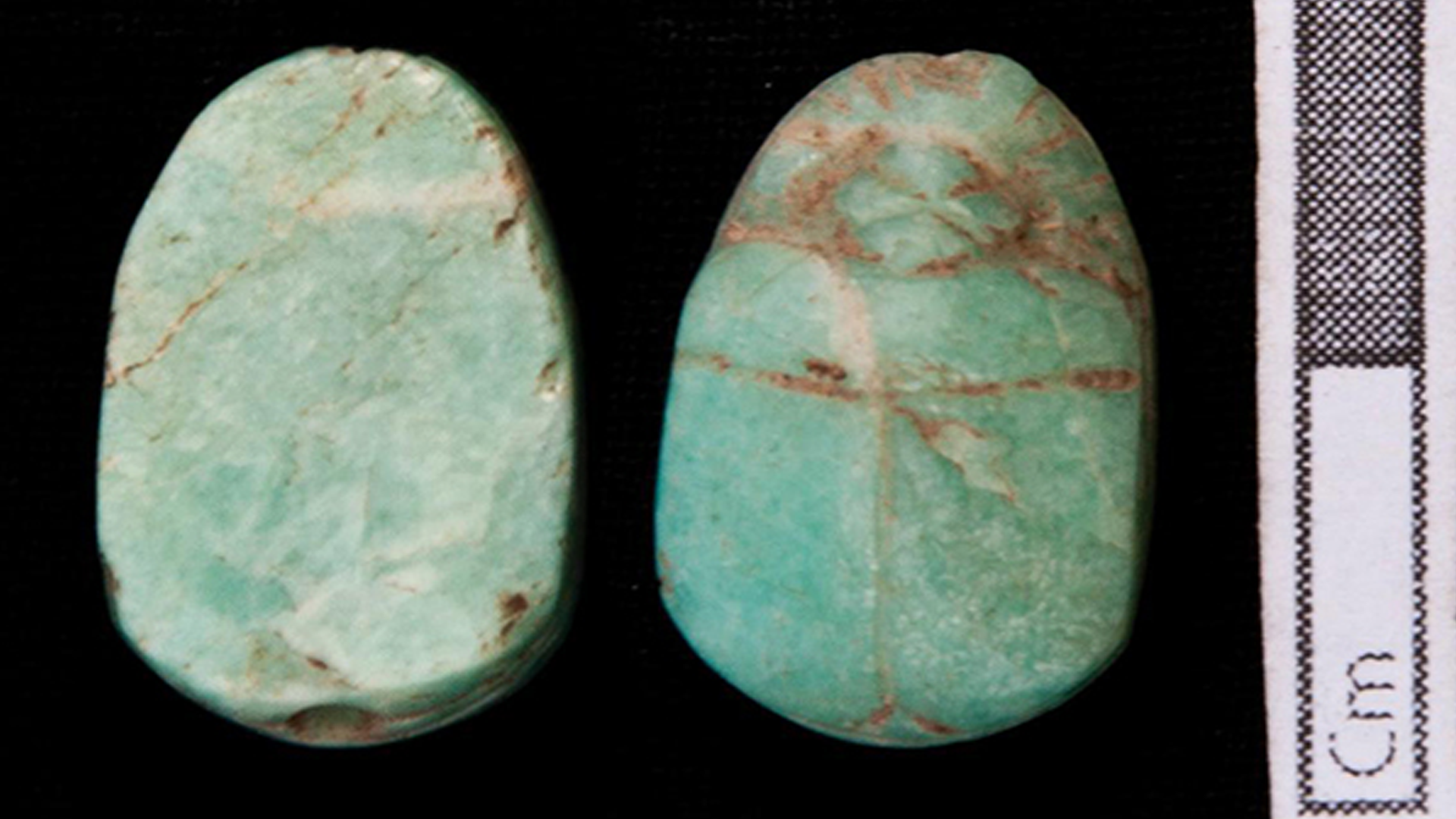 Scarab amulets found at the burial site.