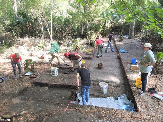 Archaelogists in northern Florida believe they've found evidence of the 'lost' Mocama city of Sarabay, first encountered by Europeans in 1562