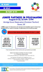 Junior Partners in Policy-Making