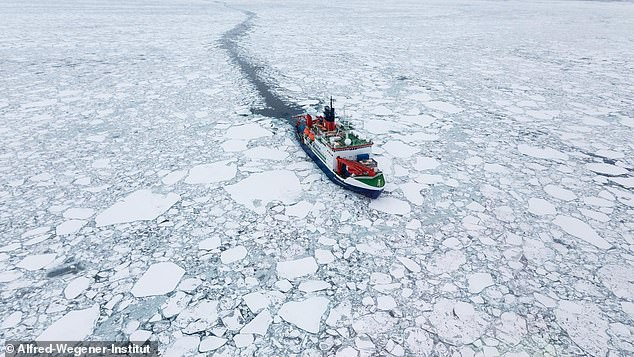 Huge swathes of the oldest and thickest Arctic sea ice is at high risk of melting this summer, a new study has warned. The research vessel Polarstern is pictured drifting in Arctic sea ice