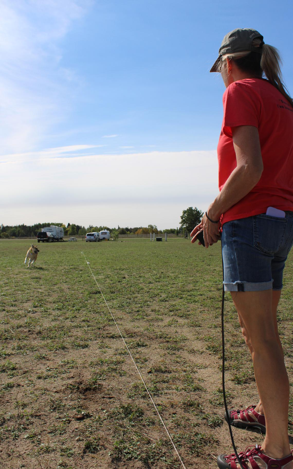 Angie Walther set up a lure coursing fun run at the Bemidji show. Dogs clearly enjoyed chasing the lure (a plastic bag) along a zig-zag path.