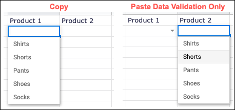 Example of copying and pasting Data Validation Only