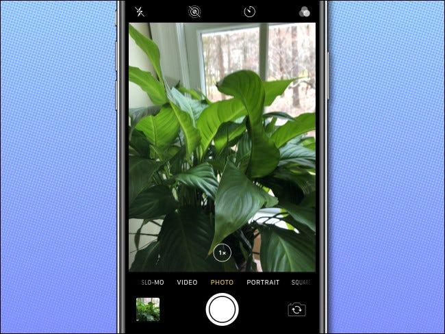 The iPhone Camera app
