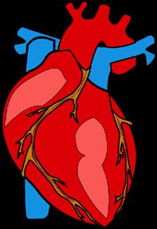 massasjepistol Hjertet