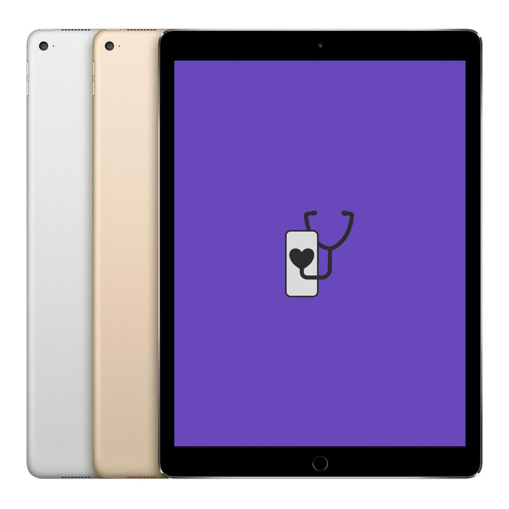 "iPad Pro 12.9"" 2015"