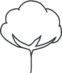 Bomuldsproduktion i fremtiden