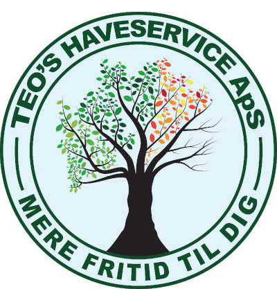 Teos Haveservice