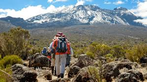 mt kilimanjaro with Terminal Tours Kenya