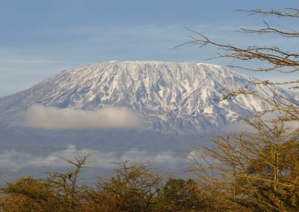 amboseli national park with Terminal Tours Kenya