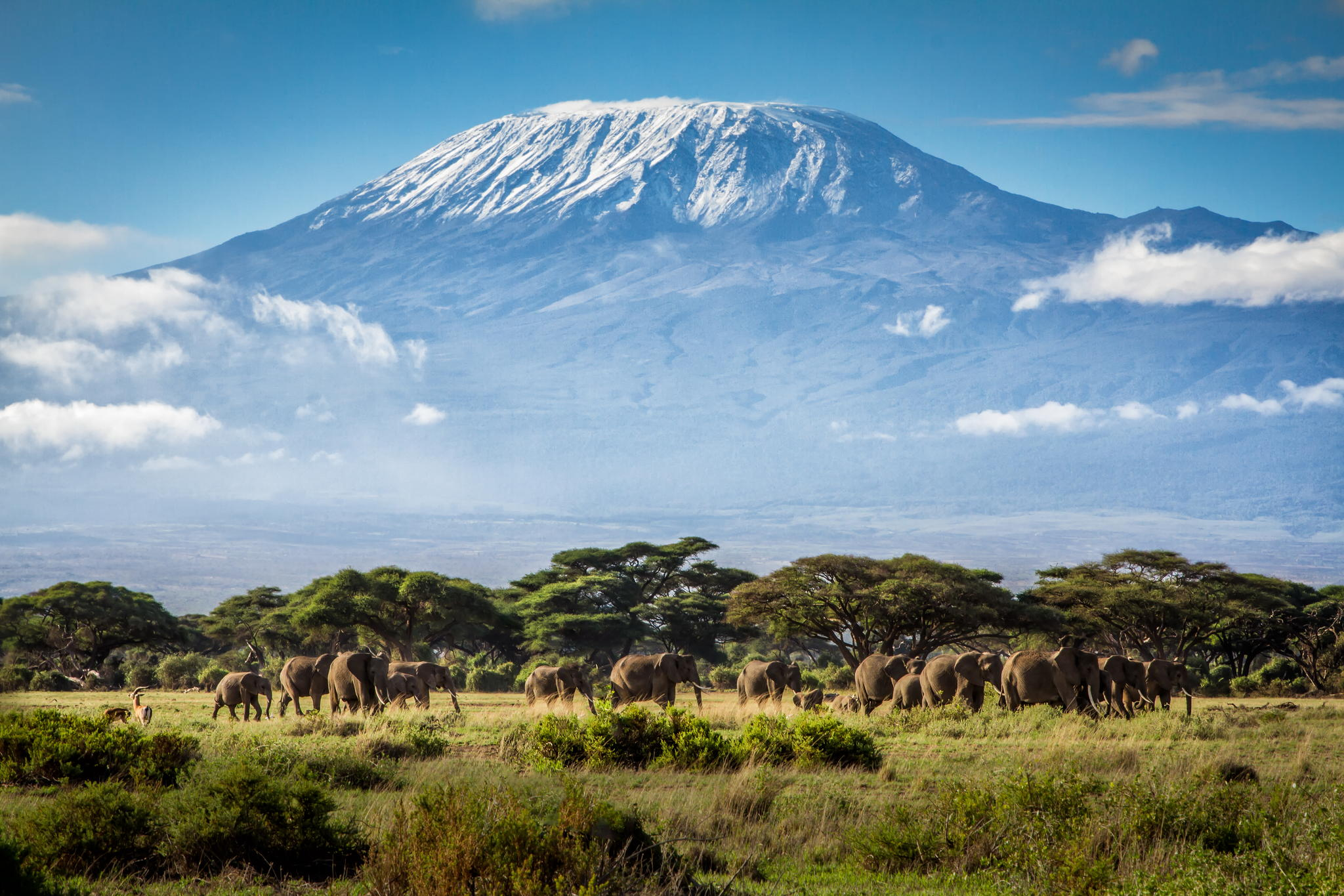 4 Days Amboseli National Park Tsavo west Tsavo East Parks ...