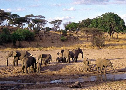 2 days Tsavo East National Park