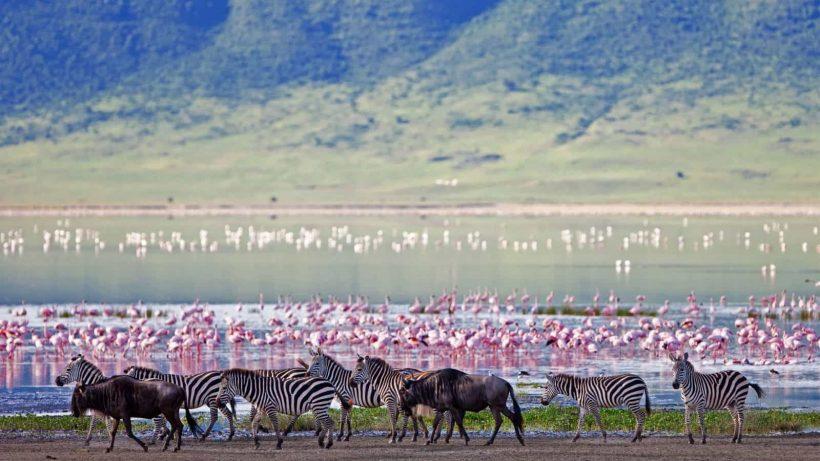 ngorongoro crater floor