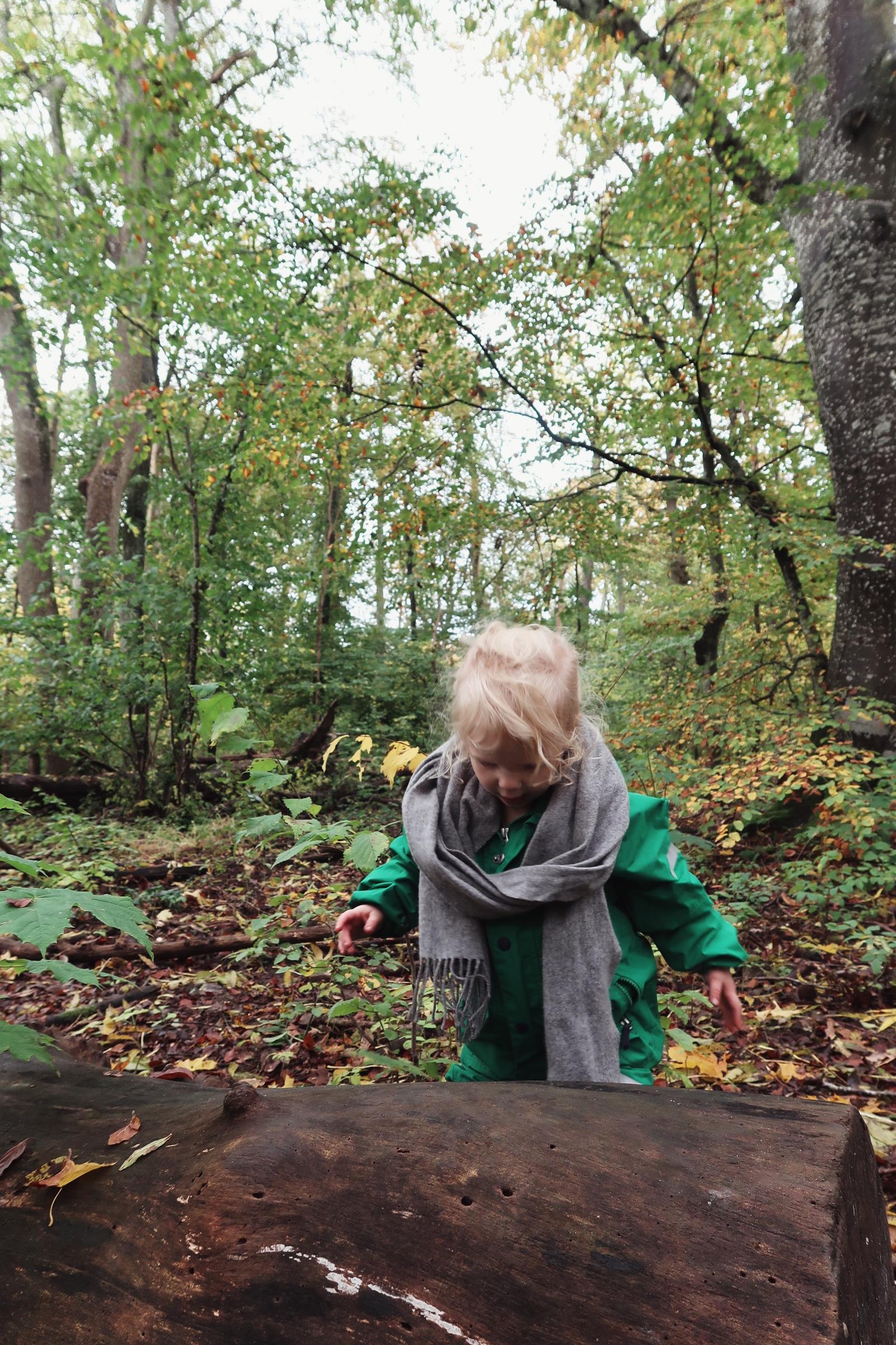 Lek med barnen i Dalby Söderskog