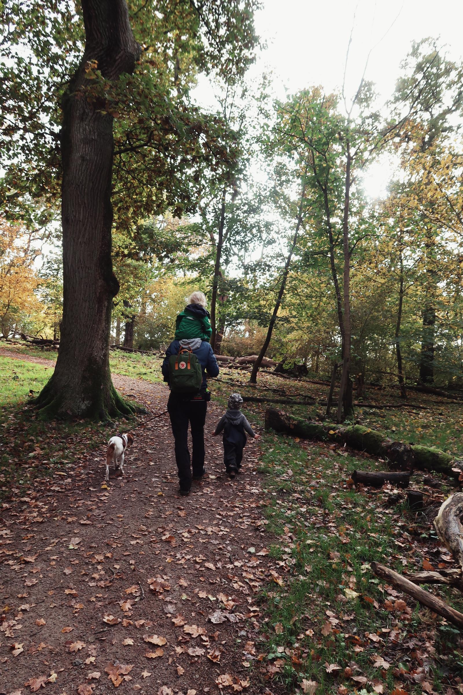 Lek med barnen och Lilly i Dalby Söderskog