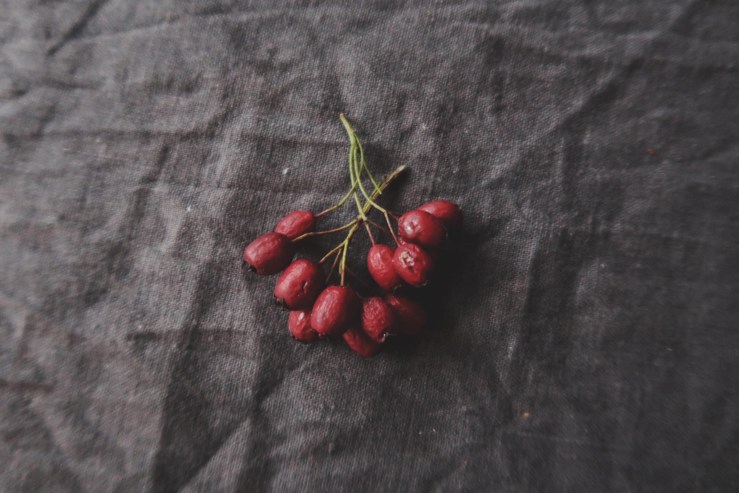 Rött julgranspynt är vackert och finns att hitta i naturen