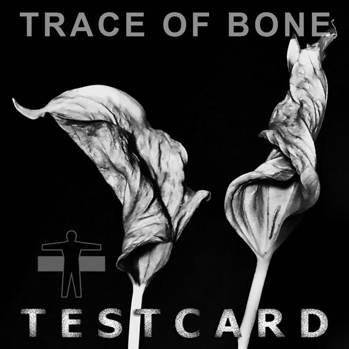 Trace of bone