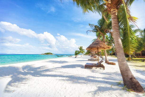 Visit Phuket Tourist Information Thailand Travelers