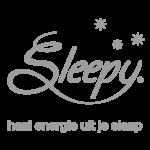 Logo Sleepy [grey]