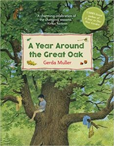 A Year Around the Great Oak Book