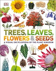 Trees, Leaves, Flowers and Seeds Book
