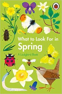 What to Look for in Spring Book