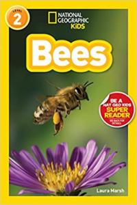 Nat Geo Bees