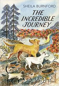 The Incredible Journey Book