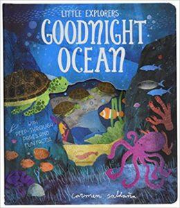 Goodnight Ocean Book