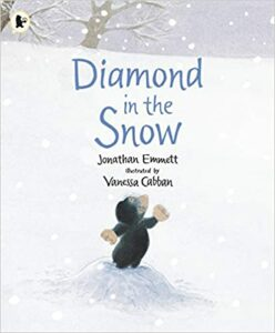 Diamond in the Snow Book