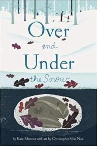 Over and Under in the Snow Book