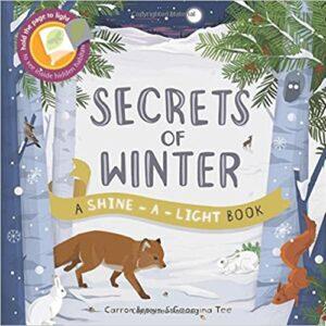 Secrets of Winter Book