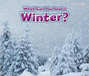 What Can You See in Winter Book