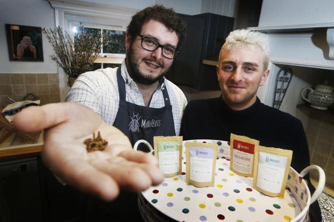 Oxford's new edible insects business MiniFeasts