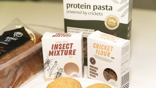 Mars bar maker invests in Australian edible bug farmer