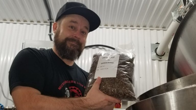 'Like an oatmeal stout with a twist,' says Quebec brewer behind cricket beer