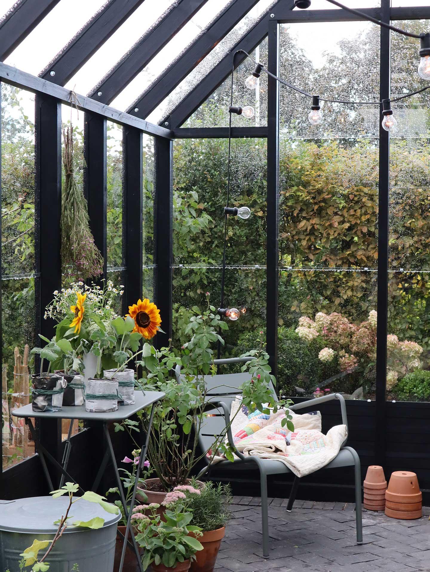 Sort trædrivhus indefra med lyskæde, stol og plantebord