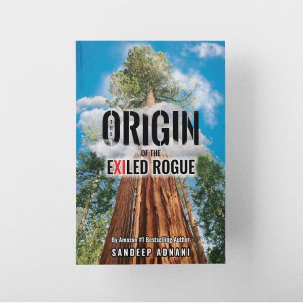 Origin-of-the-Exiled-Rogue