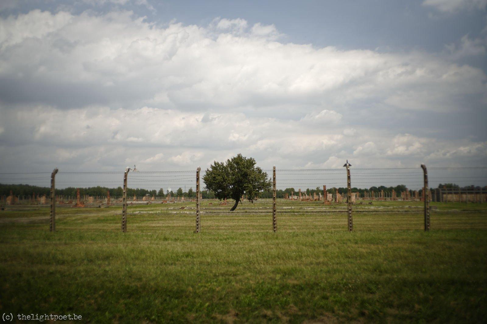 2018_06_Auschwitz_20180620_111352_DxO_PL1_1600px
