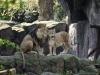 2019_04_Zoo_20190407_140236_DxO_PL2_1600px