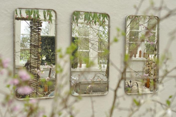 Knoppar och kvistar spejler sig
