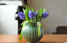 En buket hyacinter